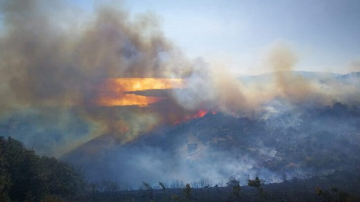 Bursa'da çıkan orman yangınını PKK yandaşları üstlendi