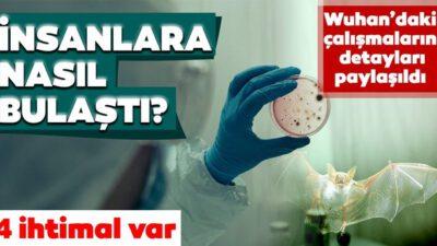 Koronavirüs insanlara nasıl bulaştı?